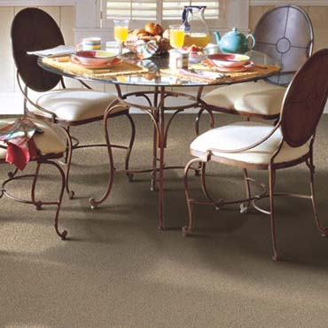 Horizon Carpet | Pleasanton, CA