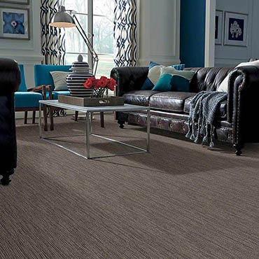Anso® Nylon Carpet | Pleasanton, CA