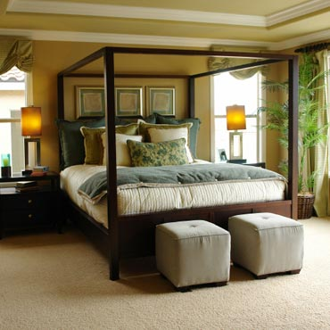 STAINMASTER® Carpet | Pleasanton, CA